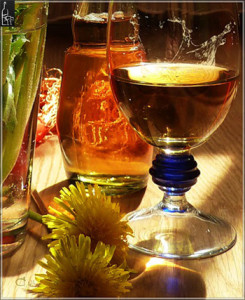 одуванчики и вино