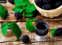 Как готовить и пить Ежевичное вино