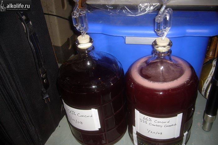 Брожение вина из винограда в бутлях