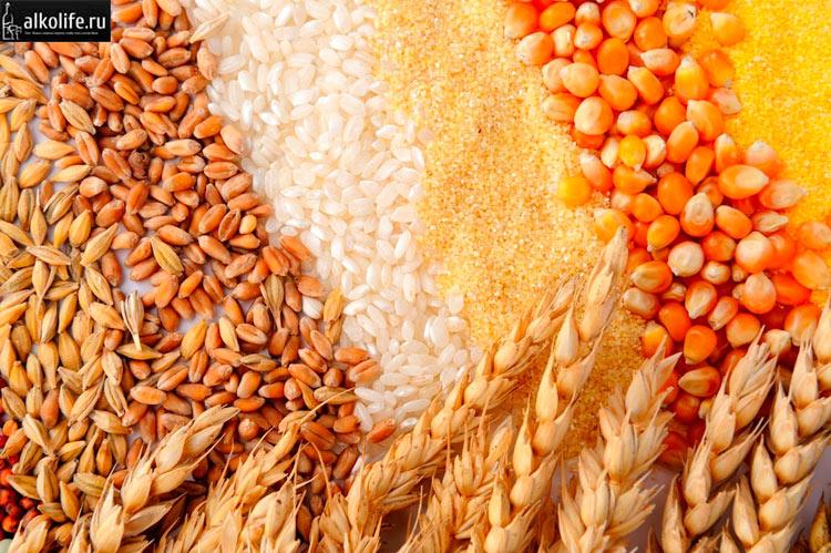 Виды зерна для солодового самогона
