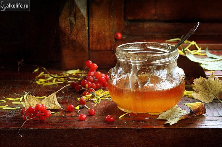 Ягоды калины и мед