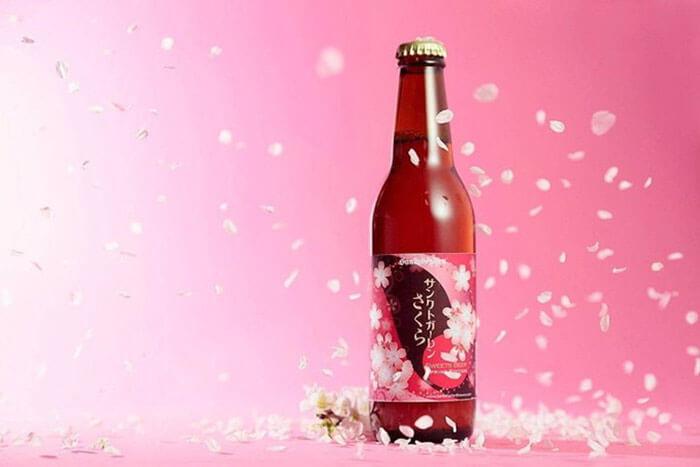 Пивной напиток из вишни Сакура